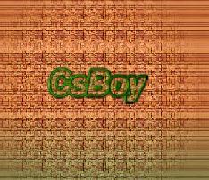 CsBoy